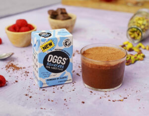 OGGS chocolate mouse